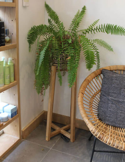 inside Tribe Lifestyle salon at Manly