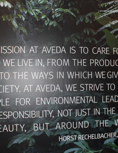 mission statement of Aveda