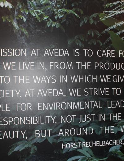 mission statement of Aveda